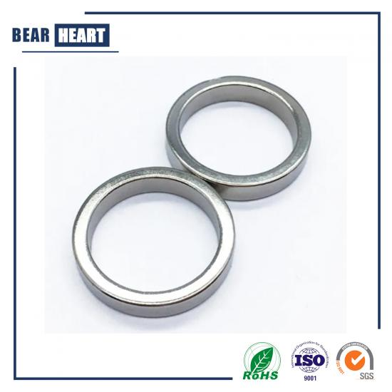 Customized Neodymium Ring Speaker Magnet
