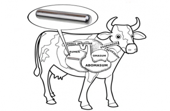 AlNiCo Bar Shaped Cow Magnet